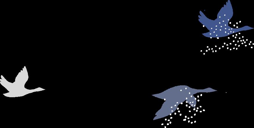 2016_PINASUUTITSAQ_illustrations_v2-OISEAUX01